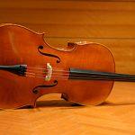 img_cello_3